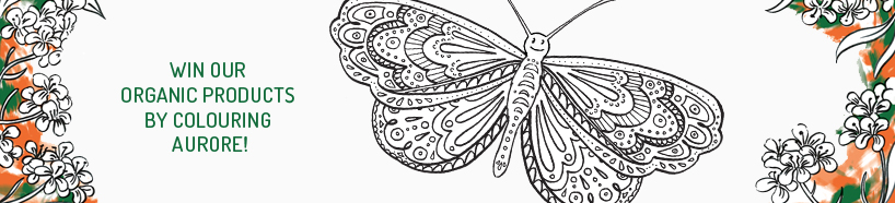 bandeau-665x151-papillon.jpg